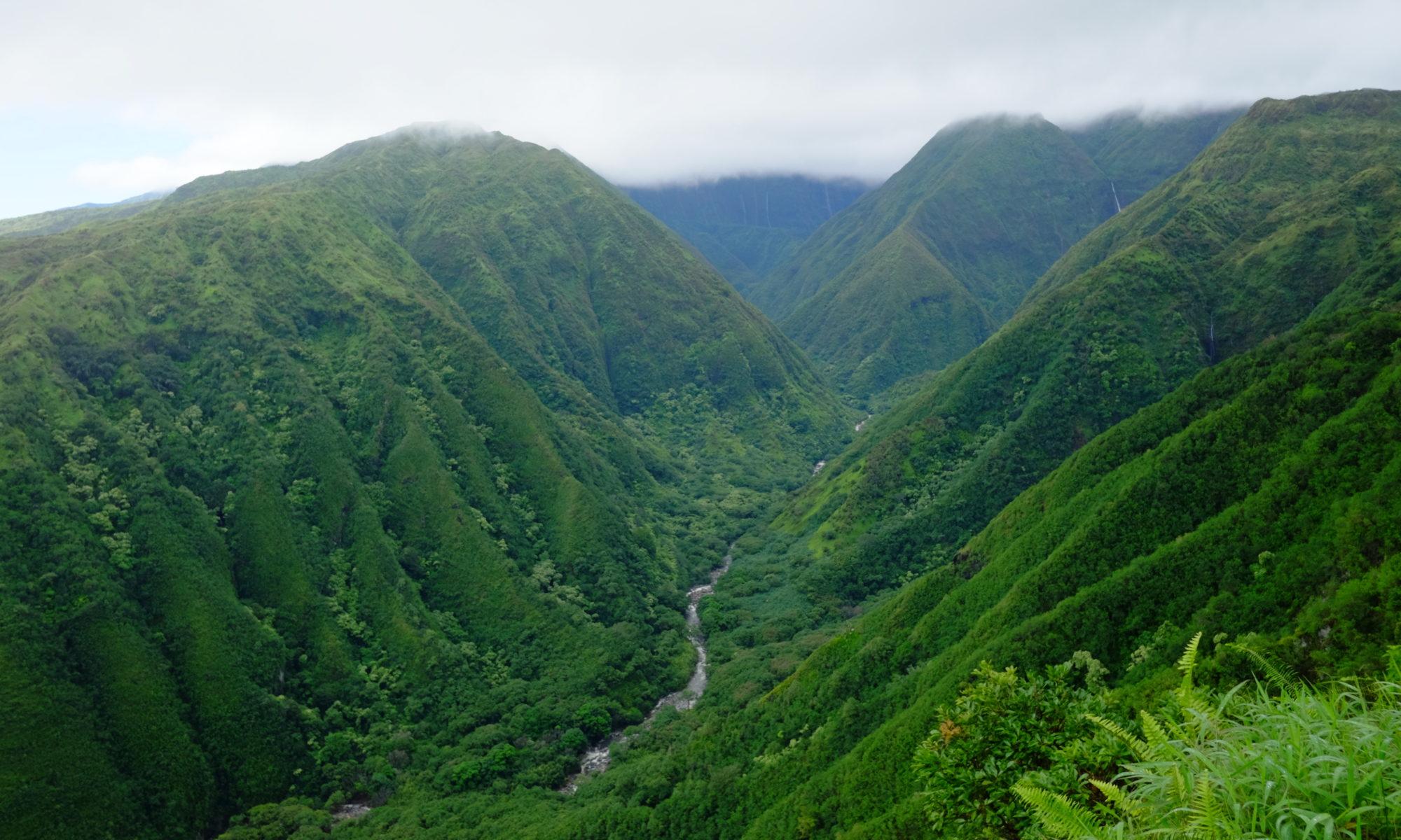 Maui Nui Natural History